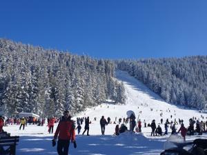 """""""Мальовица"""" откри сезона със запомнящо се снежно парти"""