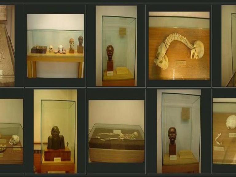 София - Национален антропологичен музей
